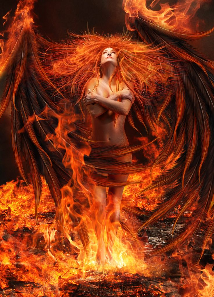 Letting Go A Personal Story Of The Phoenix Rising